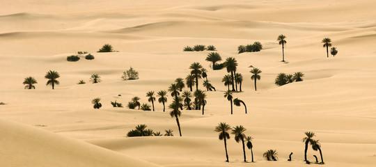Chi è l'uomo che progetta e restaura le oasi in Africa