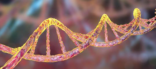 Scienze: un ricercatore cinese annuncia la nascita di due gemelle con Dna modificato