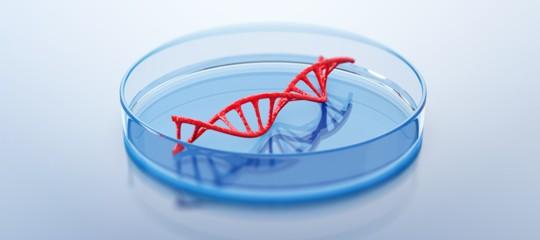 I bambini geneticamente 'migliorati' e l'esperimento diShenzhen