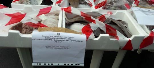 La Guardia Costiera ha scoperto un mercato del pesce scaduto (anche nel 2010)