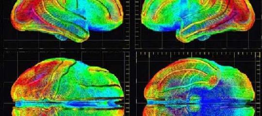 Uninterceptorcontro l'Alzheimer