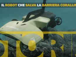 Il robot che salva la barriera corallina