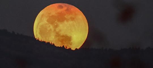 eclissi luna rossa sangue lupo
