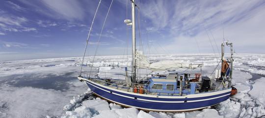 Isuperbatteriscoperti al Polo Nord sono una minaccia vera anche per l'Italia