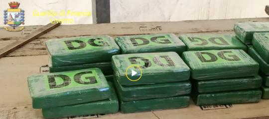 Maxi sequestro di cocaina a Livorno: 644 chili nascosti su una navetra i sacchi di caffè