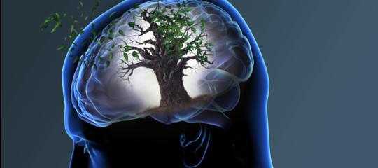 La depressione aumenta l'invecchiamento del cervello. Uno studio di Yale