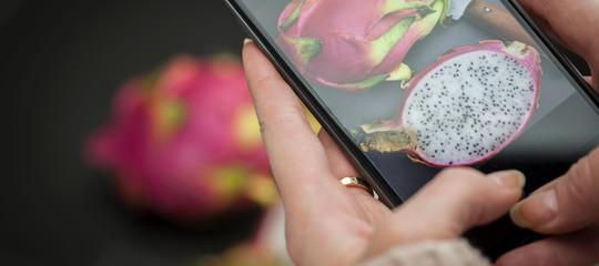 Un sensore per lo smartphoneci metterà in guardia dai cibi avariati