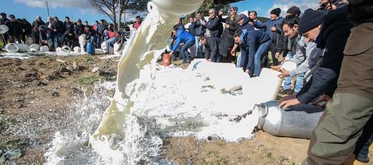 I pastori bloccano una cisterna e rovesciano 10 mila litri di latte a Oristano