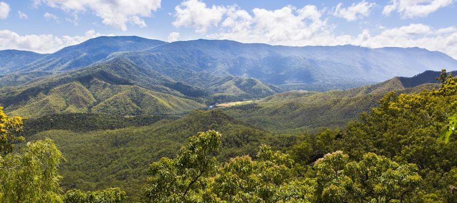 Alberi a protezione del clima, la Pianura padana faccia come l'Australia