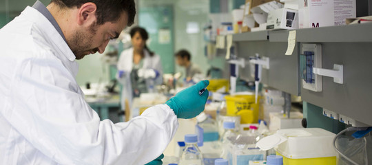 investimenti ricerca accademia lincei