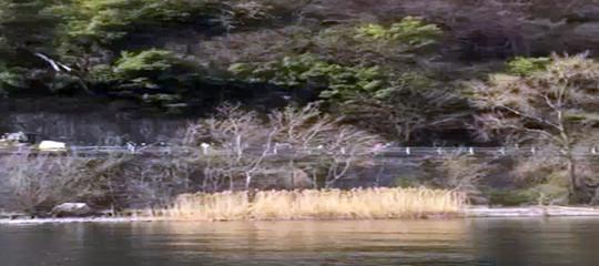 incidente auto verbania famiglia travolta lago maggiore