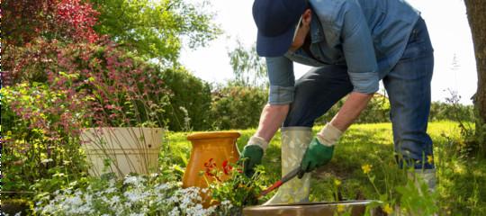 giardinaggio terapia orticola
