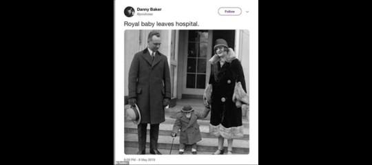 simpanzeroyal baby conduttore licenziato bbc