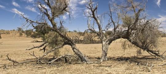 overshoot day risorse naturali italia