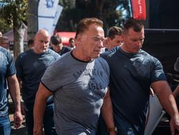 Schwarzenegger colpito da un calcio volante alla schiena in Sudafrica