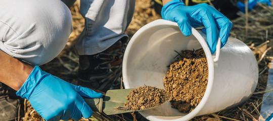 concime compost corpo umano