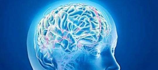 Cervello donne temperatura alta