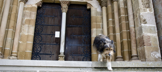 cane chiesa funerale
