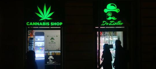 cannabis controlli negozi
