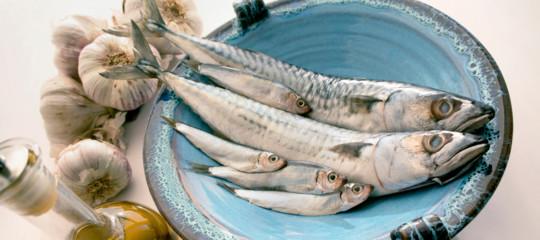 mangiare pesce azzurro