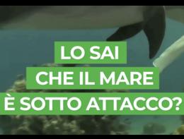Nei mari italiani un reato ogni due ore
