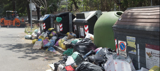 guerra topi gabbiani rifiuti roma