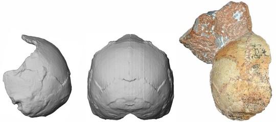 homo sapiens antico europa