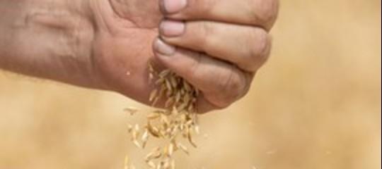 ritorno mestiere contadino reddito
