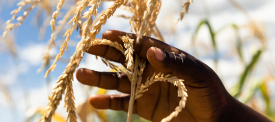 africa sviluppo sostenibile