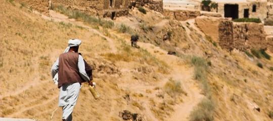 pace usa talebani
