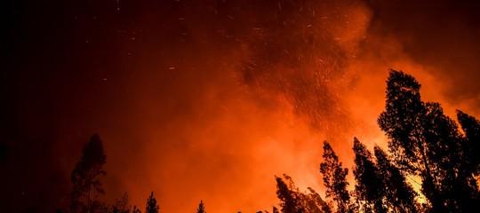 numero incendi mondo