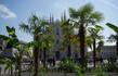 milano ambiente foresta urbana alberi