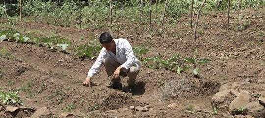 siccita contadini emigrazione