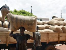 Costa d'Avorio e Ghana venderanno più caro il cacao per combattere la povertà