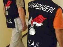 I Nasdi Firenze hanno sequestrato 16 tonnellate di falso olio extravergine, 14 indagati