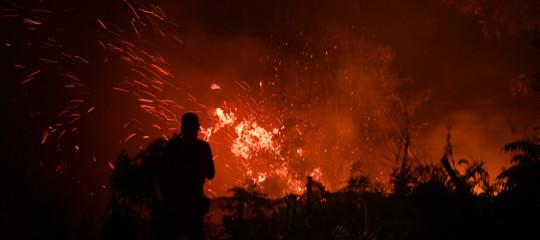 incendi indonesia malesia singapore