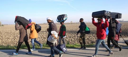 migranti ong porti aperti