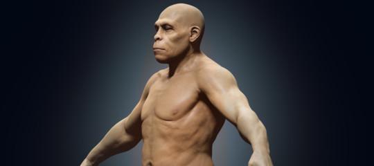 homo erectus scoperta