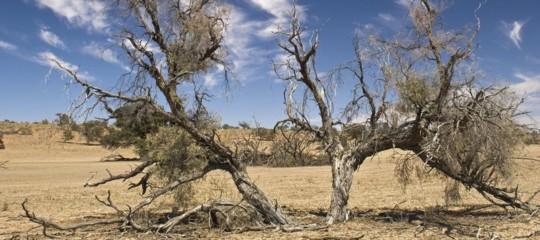 cambiamenti climatici prodi clima nubi