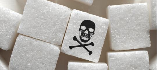 singapore bando zucchero