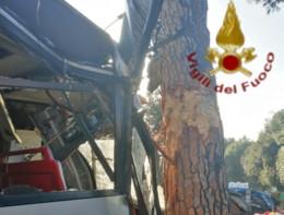 Un autobus a Roma è finito contro un albero