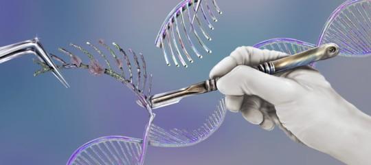 editing genetico nuova tecnica