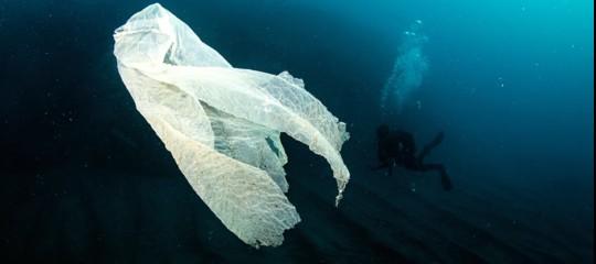 sacchetti plastica ambiente