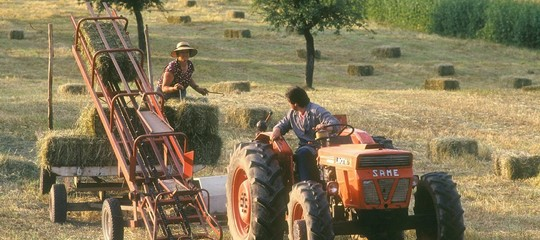 giovani tornano ad agricoltura