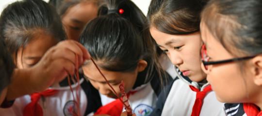 Cina soda caustica scuola materna
