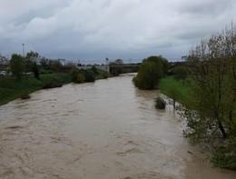 Maltempo: 500 persone evacuate in Toscana per il Cecina in piena