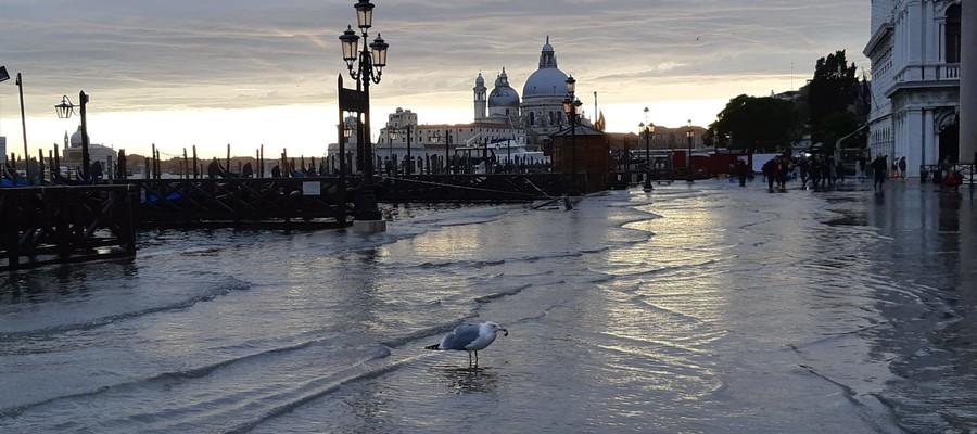 La marea dà tregua a Venezia. Ma la guardia resta alta