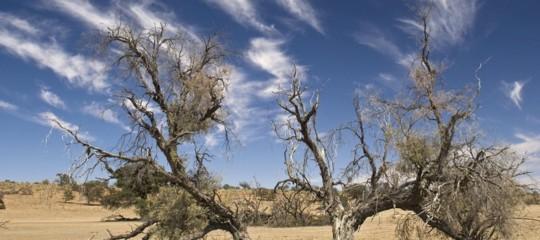 Clima Onu emissioni