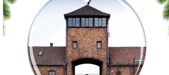 Auschwitz amazon addobbi natale
