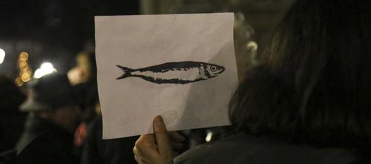 bambini disegnano sardine genova